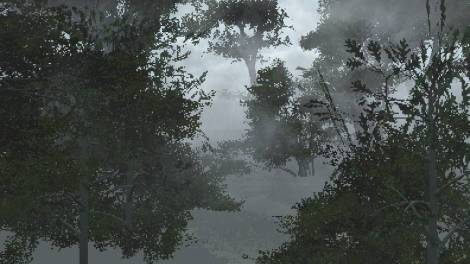 creating a visual effects 3d forest